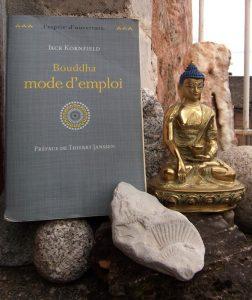 Jack Kornfield, Bouddha mode d'emploi