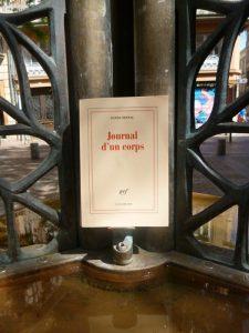 Daniel Pennac, Journal d'un corps