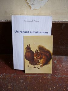 Emmanuelle Pagano, Un renard à mains nues