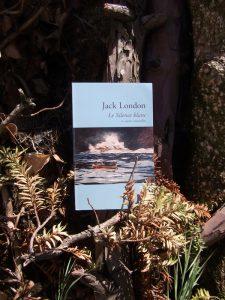 Jack London, Le silence blanc