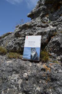 Causse Méjean, chaos de Nïmes-le-Vieux - Kenneth Cook, Le koala tueur