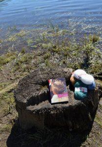 Monts de Lacaune, lac du Laouzas - Alan Bennett, La reine des lectrices
