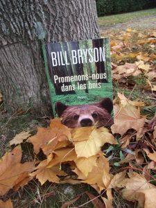 Bill Bryson, Promenons-nous dans les bois