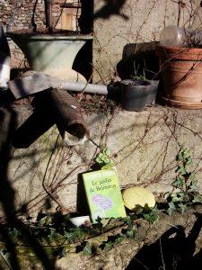 Elizabeth Goudge, Le jardin de Belmaray