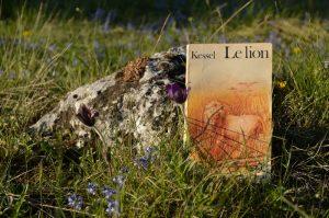 Causse du Larzac, la Couvertoirade - Joseph Kessel, Le lion