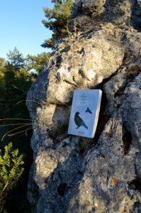 Causse Noir, Roquesaltes - Jim Harrison, Retour en terre