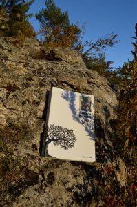 Causse Noir, Roquesaltes - Alice Munro, Trop de bonheur