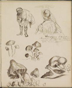 Rijksmuseum - Amélie Nothomb, Le voyage d'hiver, lu par Thibault de Montalembert