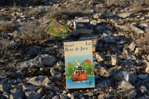 Causse du Larzac, roc du Mérigou - Joseph Kessel, La rose de Java