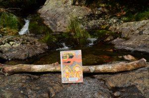 Massif de l'Aigoual, cascade de l'Hérault - Pas de traces dans le bush de Arthur Upfield