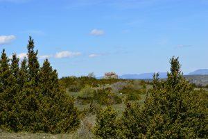 Causse du Larzac, roc du Mérigou