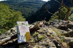 Massif de l'Aigoual, cascade de l'Hérault - Guide des lichens de France : Lichens des arbres – Chantal Delzenne-Van Haluwyn, Juliette Asta