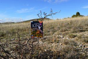 Causse du Larzac, roc du Mérigou - Joyland de Stephen King