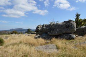 Massif de l'Aigoual, col de Faubel