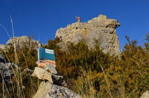 Causse du Larzac, roc du Mérigou - Un homme est tombé de Tony Hillerman