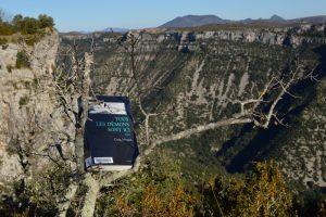 Causse du Larzac, dolmen de la Prunarède - Tous les démons sont ici de Craig Johnson