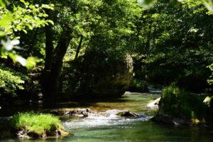 Peyreleau - La Jonte