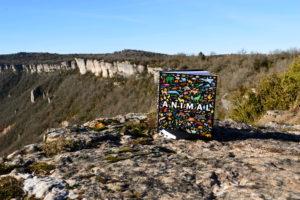 Causse du Larzac, falaises de Saint-Beaulize - Phaidon, Animal