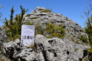 Causse du Larzac, rocs du Lauradou - Jean Dubillard, Je dirai que je suis tombé