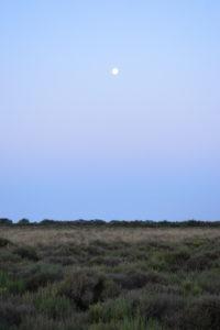 Vendres-plage - La lune au lever du jour