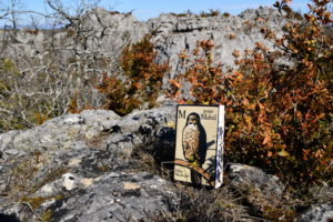 Causse du Larzac, rocs du Lauradou - Helen Macdonald, M pour Mabel