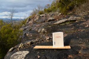 Vabres l'Abbaye, grotte - David McNeil, Un vautour au pied du lit