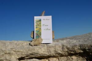 Cirque de Navacelles, dolmen de la Prunarède - Nicole Lombard, L'année d'Anaïs