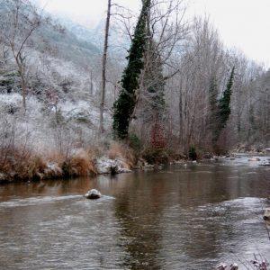 Gorges de la Jonte (en amont de Peyreleau - Aveyron)