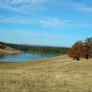Le Lac des Pises, rives sud - Mt Aigoual