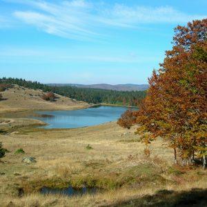 Le Lac des Pises - rives sud - Mt Aigoual