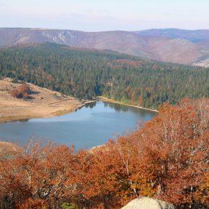Le Lac des Pises - Mt Aigoual