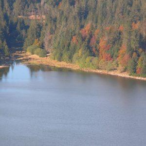 Lac des Pises, rives nord