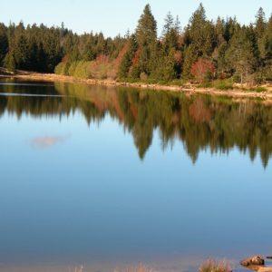 """Le Lac des Pises, """"miroir"""" - Mt Aigoual"""