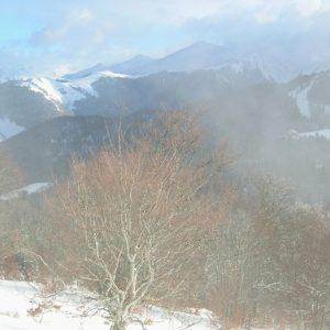 Dans les nuages (Bois de Soulan) Le Mourtis