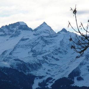"""Cap de la Pique (alt. 1878m.) vu des """"Granges de Bouygues"""" (Burat)"""