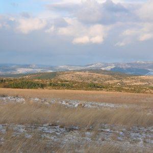 Causse du Larzac vers la Couvertoirade, au loin le massif de l'Aigoual
