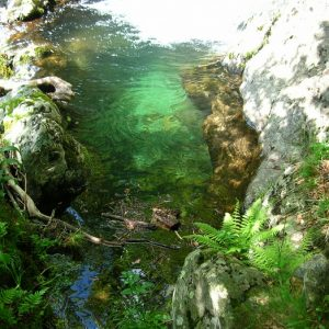 Vers les sources de l'Hérault