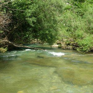 La Vis - En amont de Navacelles