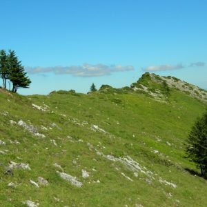 descente du Cagire sur vers le Col de Coume Ossan