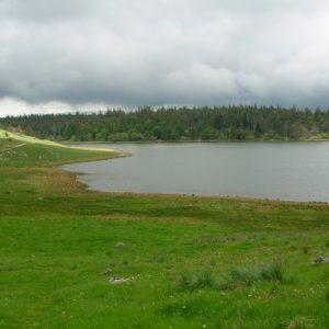 Lac des Pises au printemps (Mt Aigoual)