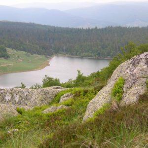 Lac des Pises - vu de Ribaldès, Mt Aigoual au printemps