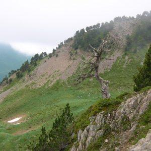 """""""Pas de la Mounjoye"""" (alt. 2069m., frontière Espagnole) Caume d'aubert - Pyrénnées (Luchon))"""