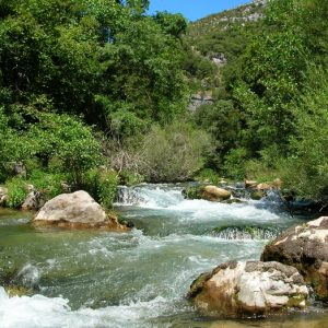 Les gorges de la Vis - Dans l'aval de Navacelles