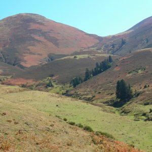 Sarrouègère, et le Pic de Burat à 2154m. d'alt. (Luchonnais)
