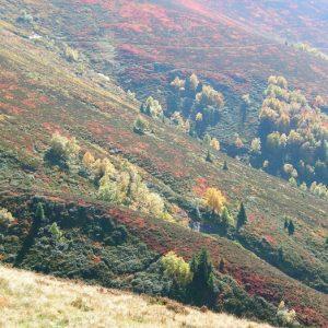Hont Arrouye (atl. 2024m.) flanc ouest du Pic de Bacanère