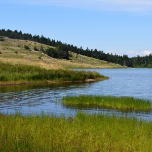 Lac des Pises, berge sud - Massif de l'Aigoual