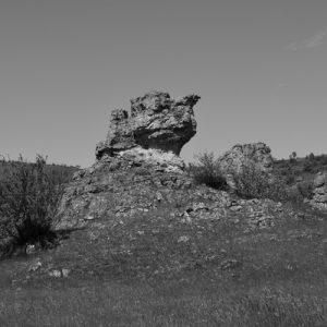 """""""camelus"""" - Chaos de Nîmes-le-Vieux (Causse Méjan)"""