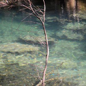 """""""L'eau"""", dans les Gorges de la Vis"""