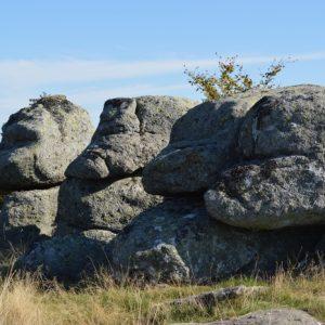 Roc de Salidou - Massif de l'Aigoual