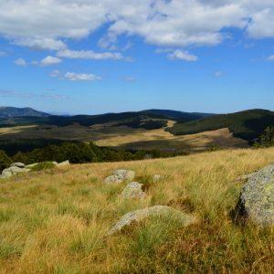 """""""Le Lingas"""", à l'horizon le Mont Aigoual (Cévennes)"""